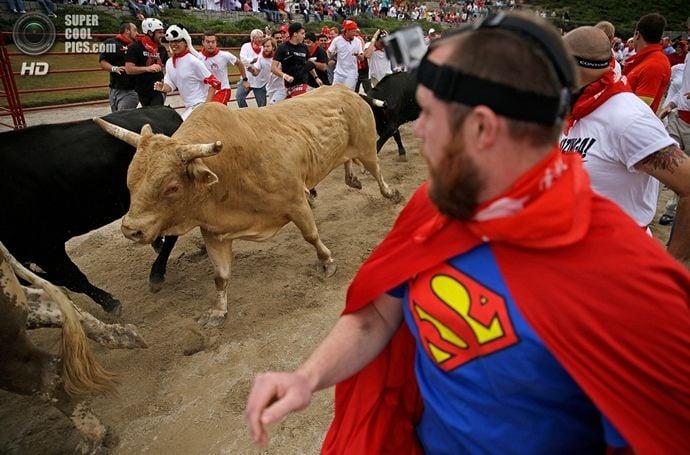 Running Of The Bulls American Style